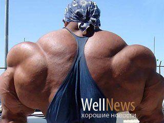 Новость на WellNews: Athletica nervosa – новое модное заболевание