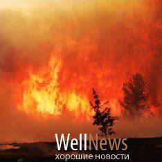 Новость на WellNews: Пожары в России могут приблизить климатический апокалипсис