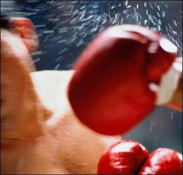 Новость на WellNews: Запрещенные приемы бокса, которые часто используют