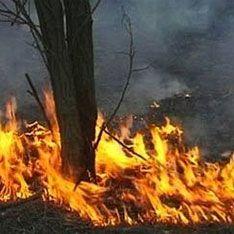 Новая волна огня подбирается к жилым домам