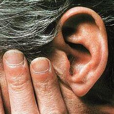 По ушам о человеке можно узнать все