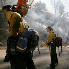 Шварценеггер объявил чрезвычайный режим в Калифорнии