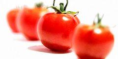 Первый музей помидоров открылся в Италии