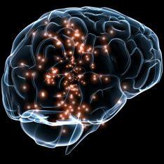 Ученые создадут идеальную память