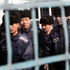 Медведев выпустил на свободу положительных преступников