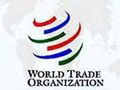 Уже в 2011 году Россия сможет вступить в ВТО